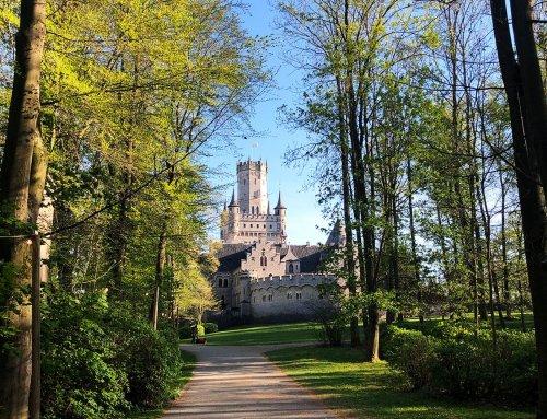 Ausflugstipps in Hildesheim & Region