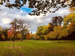 Ernst-Ehrlicher-Park im Herbst
