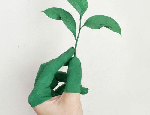 Mehr Nachhaltigkeit im Alltag: 9 simple Tipps