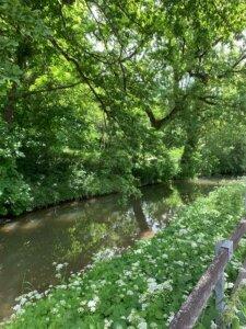 Ehrlicherpark Hildesheim